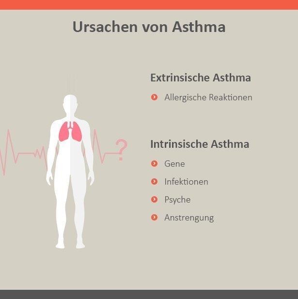 asthma-ursachsen