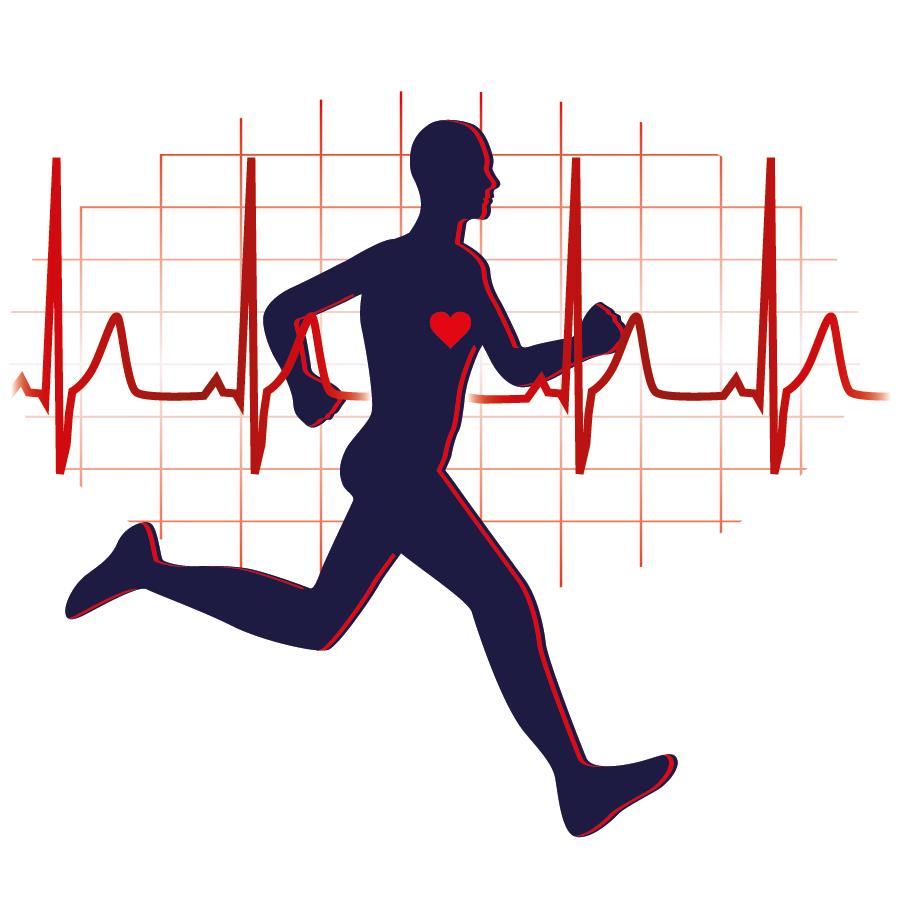 bluthochdruck-und-sport